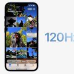 iPhone 14 : au moins un modèle n'aurait pas un écran 120 Hz